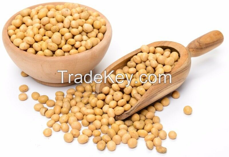 Organic Soya Beans Wholesale  Organic large quantity