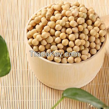 Organic Soya Beans for sale large quantity
