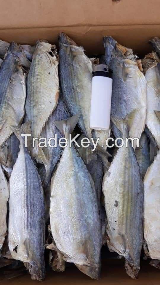 Dried Indian Mackerel