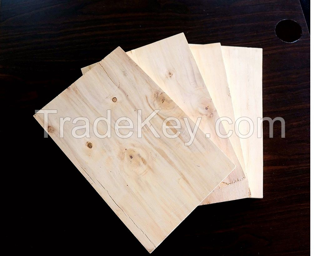 Vietnam high quality cheap price packing plywood AB BC face T/T L/T payment