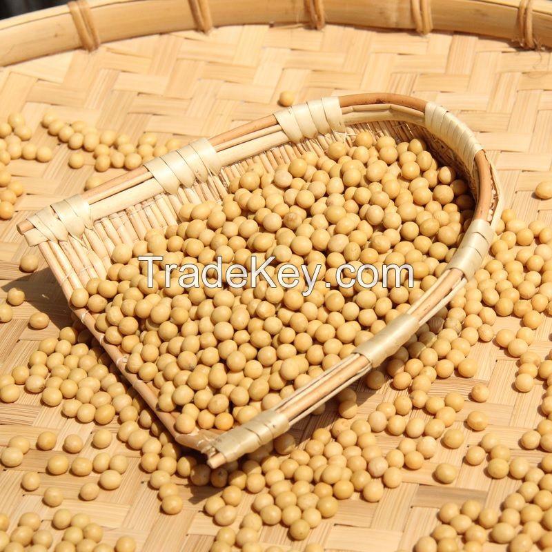 Top Grade Soybean seeds