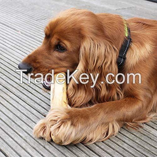 Pet Product / Dog Chewing Stick / Chewing Bone Wood Snack Treat / Chewable Coffee Tree Wood