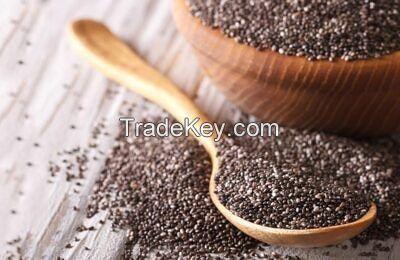 Hot selling humera wollega natural ethiopian white sesame seed