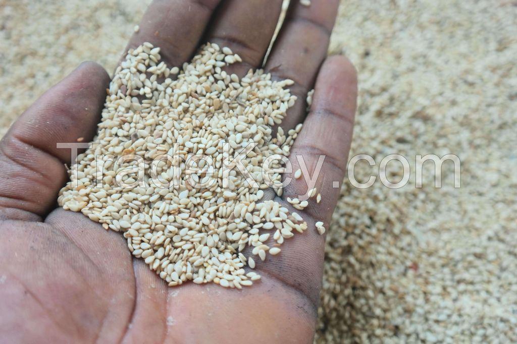 Unhauled Sesame Seeds