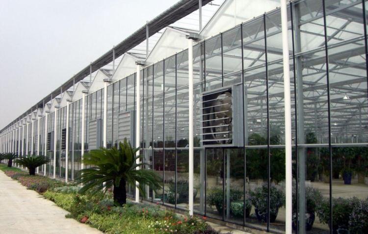 Exhaust fan/ventilation fan/ventilating fan for industrial, poultry, green house ect