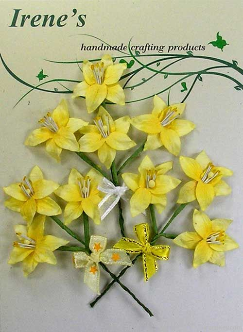 Mini Lily Pack (10) yellow