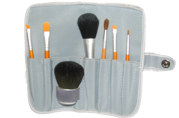 Professional Makeup Artist Brush Set With Case