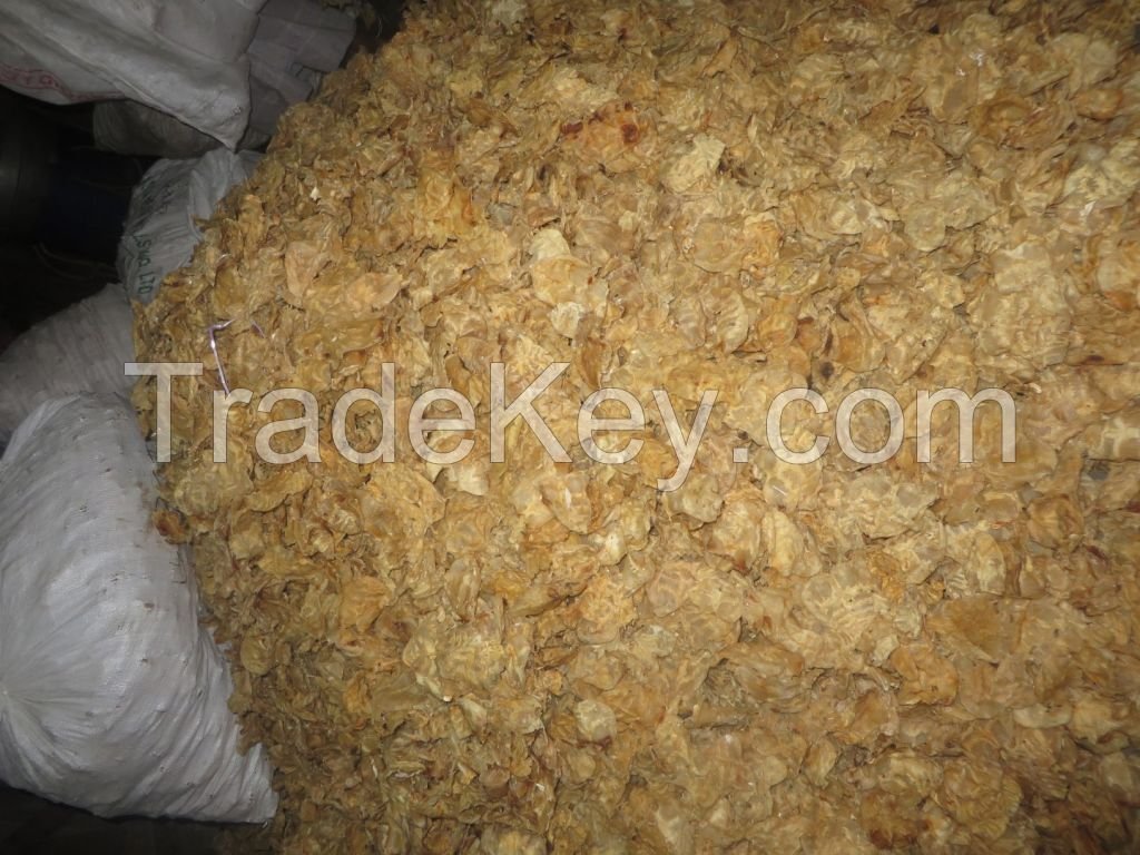 Cat fish maw(dried)