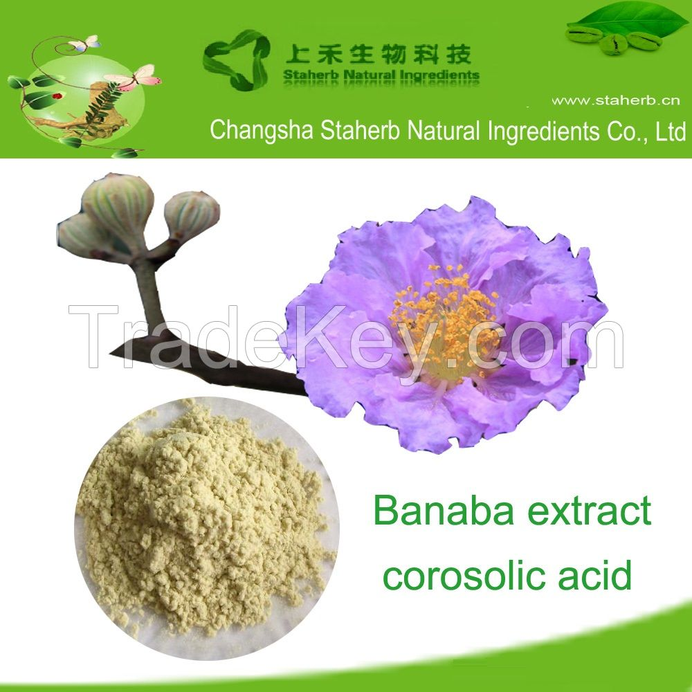 Factory supply Corosolic acid, banaba leaf extract, lose weight