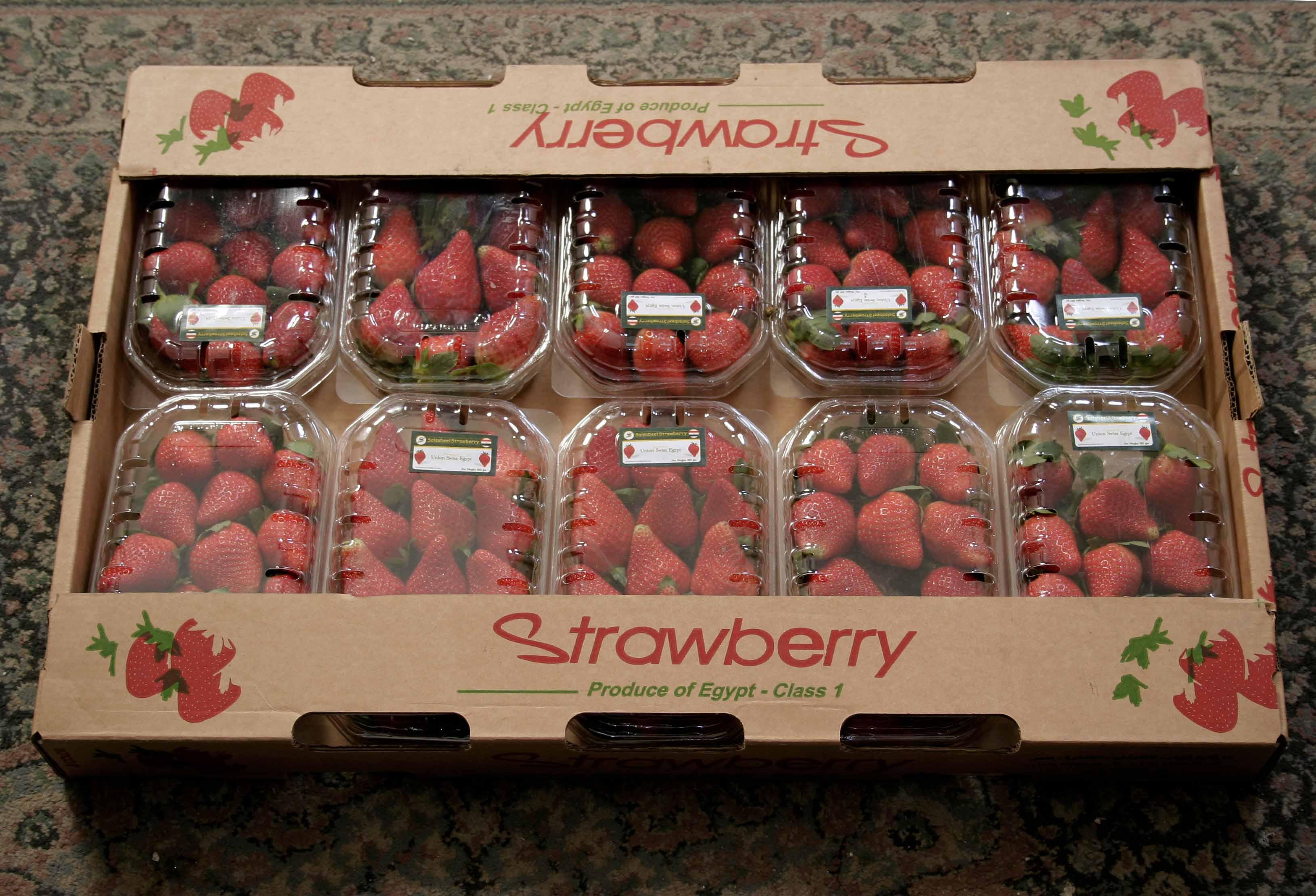 Salsabeel Strawberries