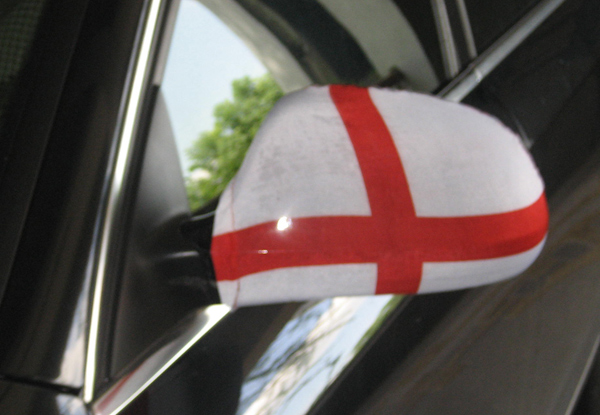 car mirror sock