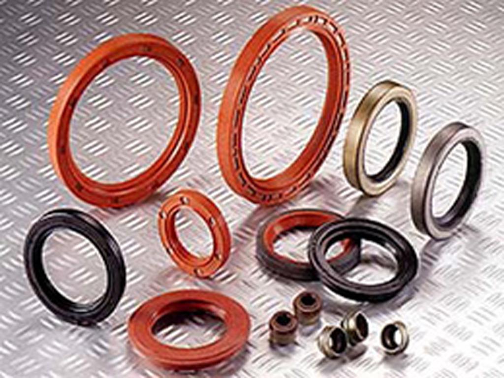 Engine Oil Seals