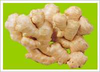Fresh Yellow Ginger