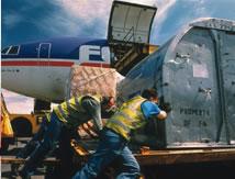 Customs Clearance Service