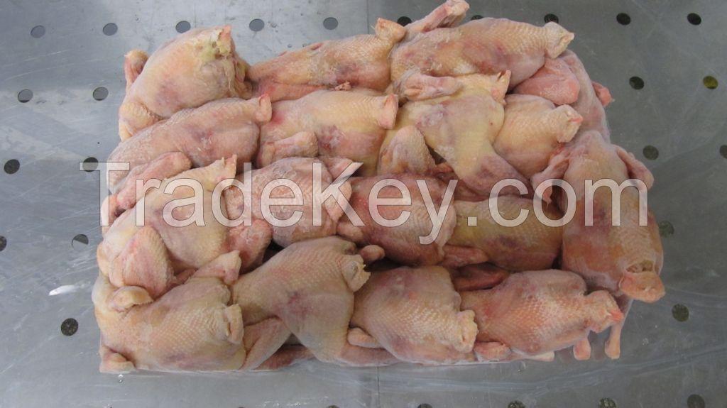 Hen meat, Poultry