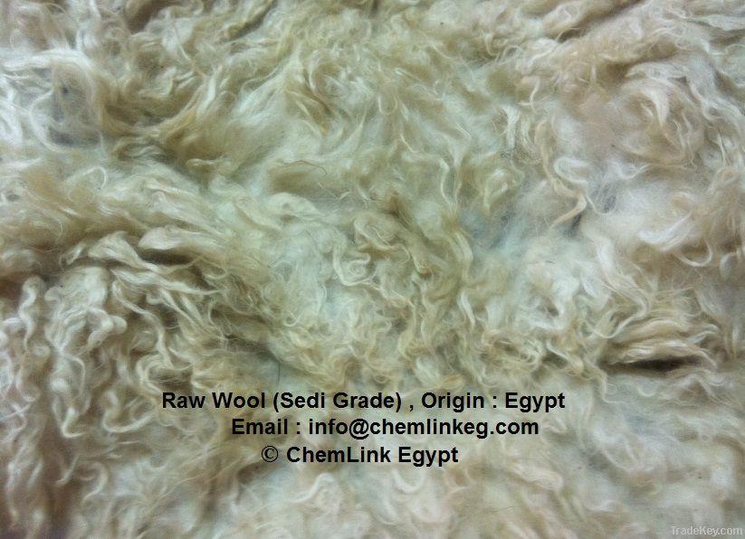 Back Washed Egypt Wool