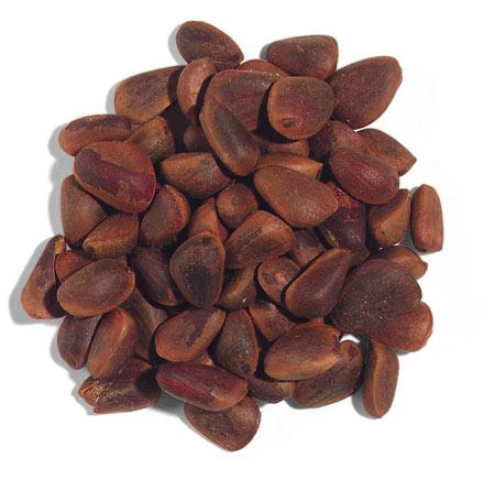 pine nut_from North Korea