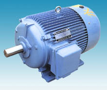 TNYC Series Three-phase Permanent Magnet Synchronous Electric Motor