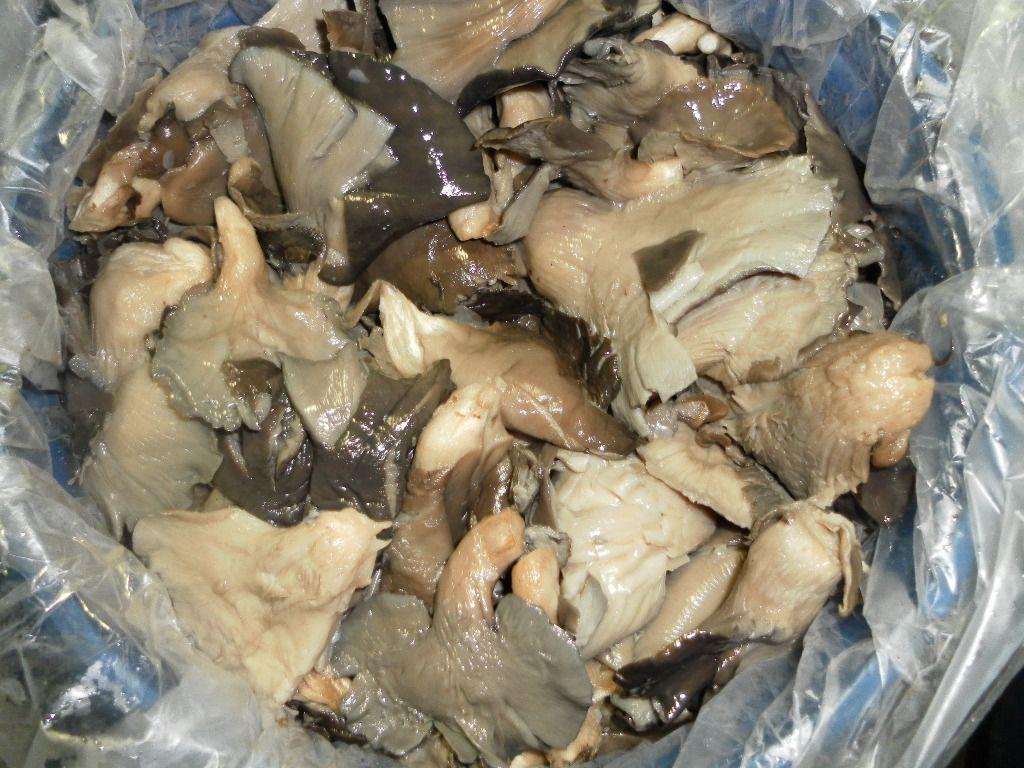 Pleurotus ostreatus quarters in brine