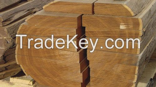 Logs and Sawn Timber for your companie