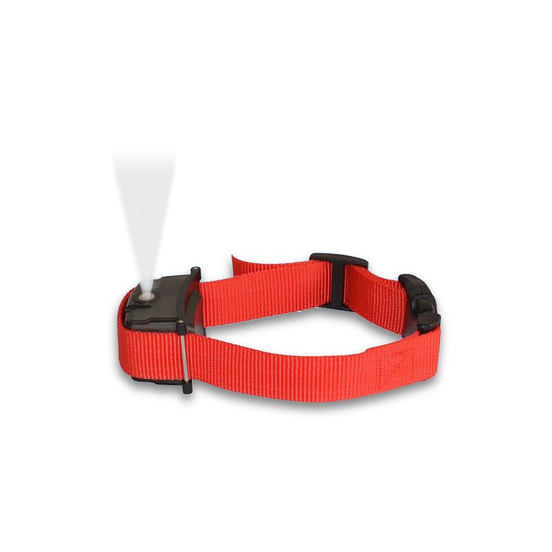 Digital pet/dog training collar