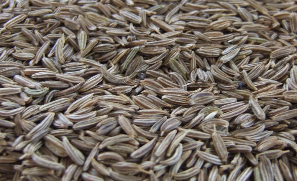 Egyptian Caraway Seeds