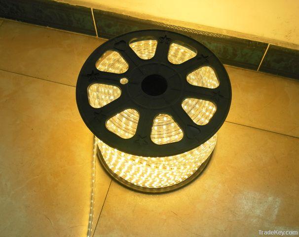 LED Reel Lights