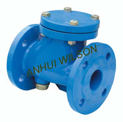 Cast iron check valves