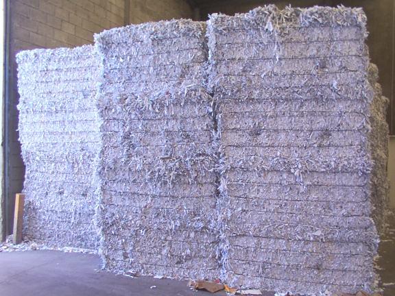 SWL (sorted white ledger) shredded