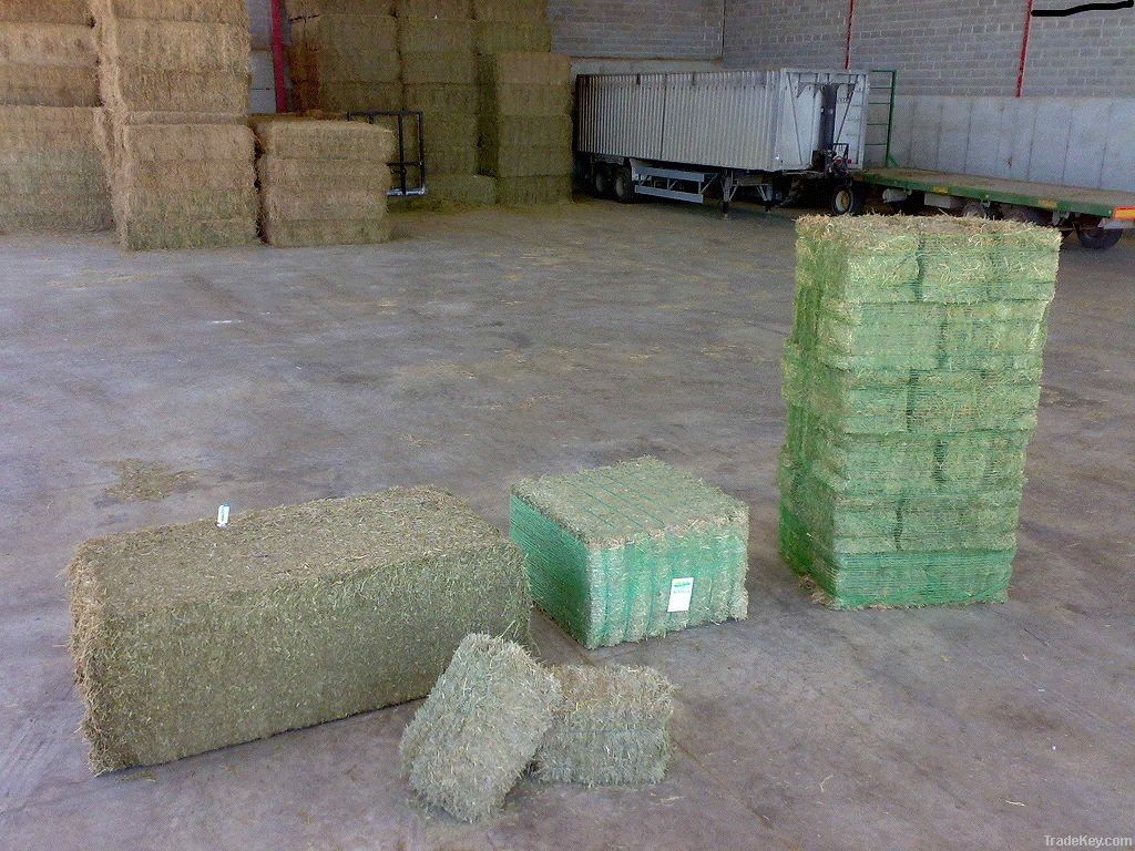 HYGIENIZED STRAW BALES