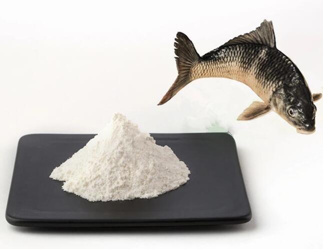 COLLAGEN POWDER(FISH, BOVINE, POULTRY, PORCINE)