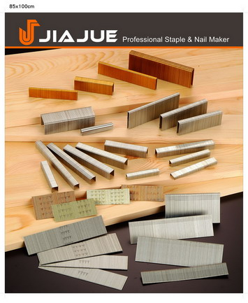 Industrial Staple/Finish Nail/Coil Nail/C Ring