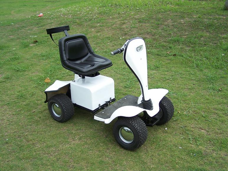 Golf Buggy (GB-100B)