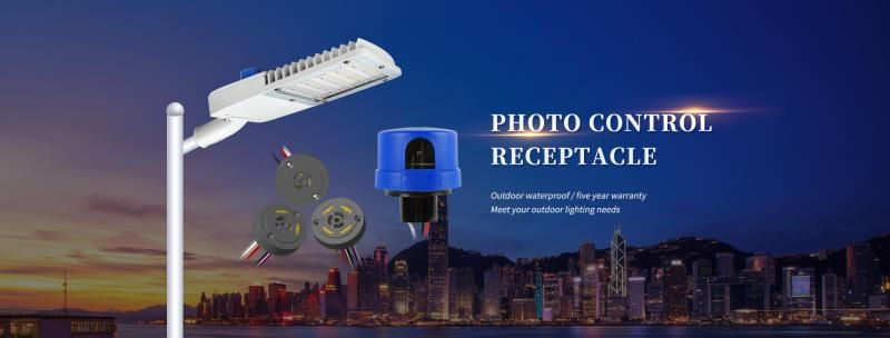 Roadway lighting controller and accessory