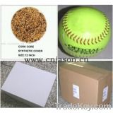 Trainning Softball