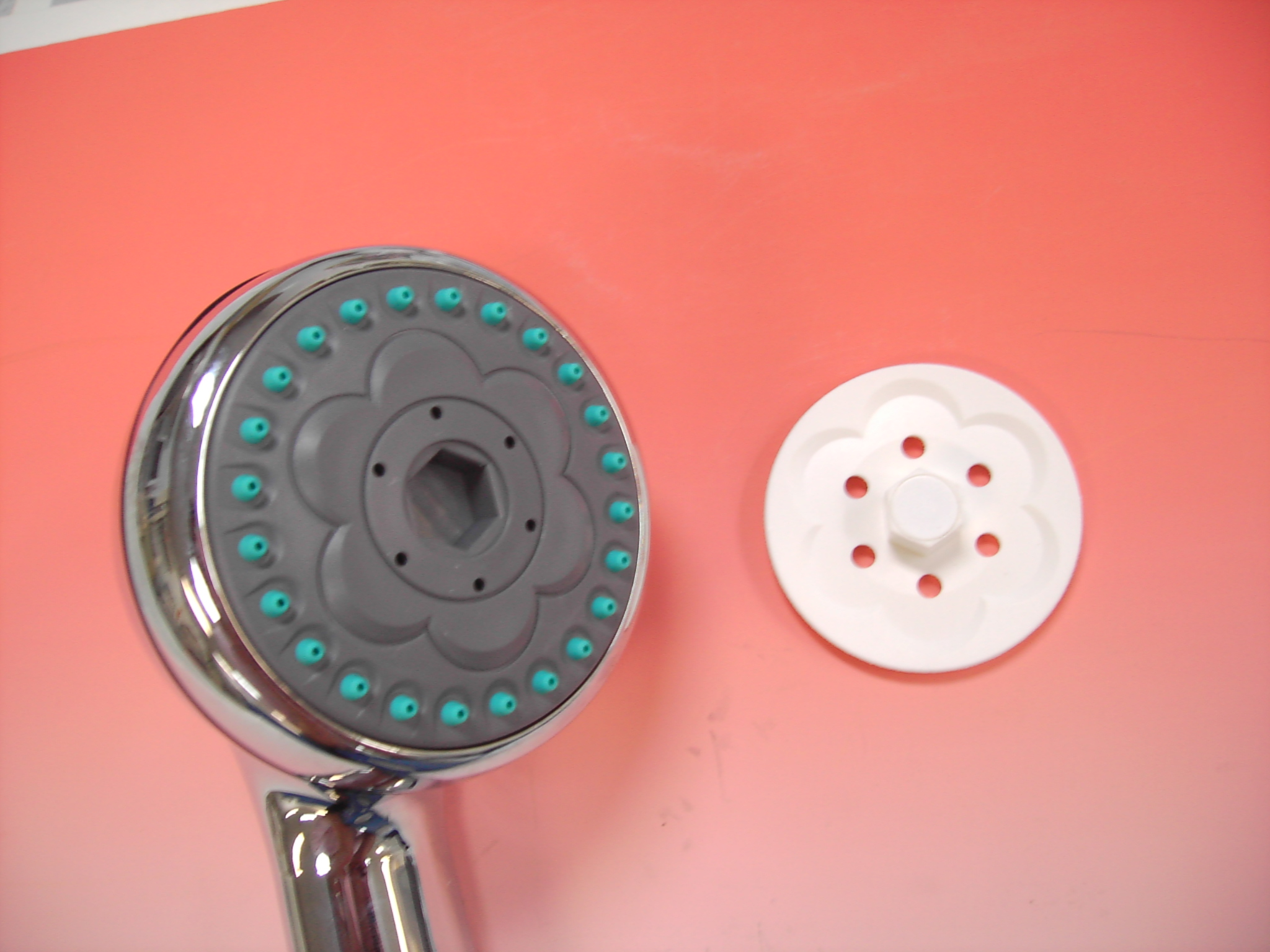 Exfoliating Showerhead