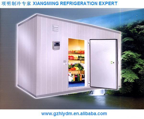freezing room(Integrative design, for export)