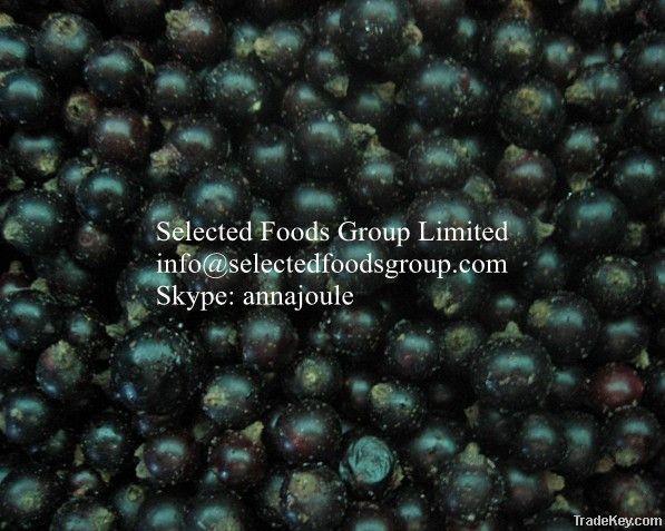 Frozen Blackcurrant