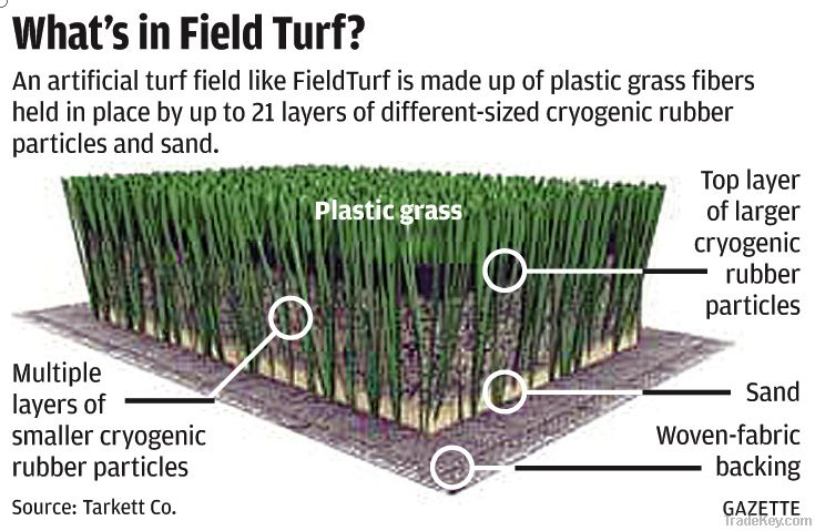 PB grass for soccer field