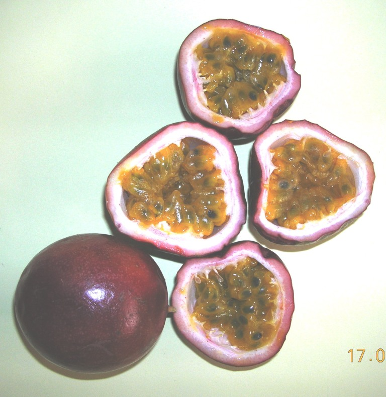 purple passion fruits from Vietnam
