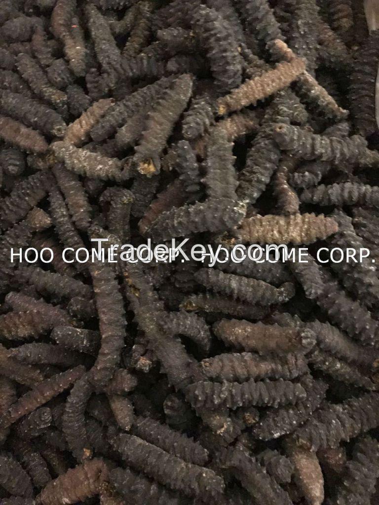 Dried Holothuria Mexicana