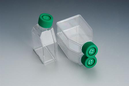 SPL Tissue Culture flasks