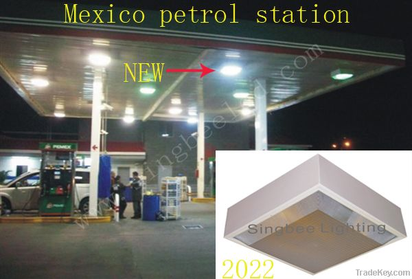 led gas station light    outdoor lighting