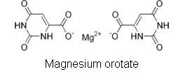 Magnesium Orotate