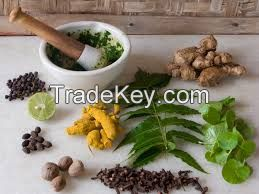All Kind Of Plant Extract, Plant Seed, Dried Flowers