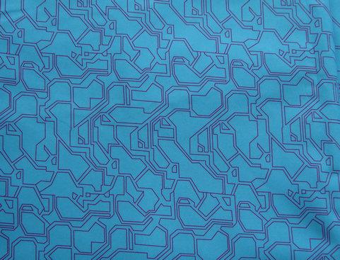 Print Shiny Fabric