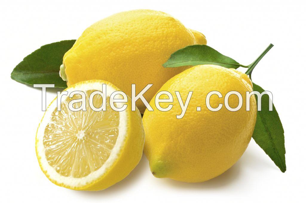 Fresh Grade A Lemon Premium Quality