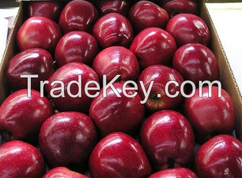 Fresn Grade 'A' Red Delicious Apples