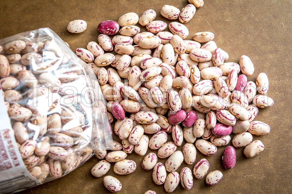 Pinto beans sugar beans