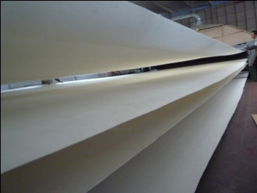 Belt filter cloth